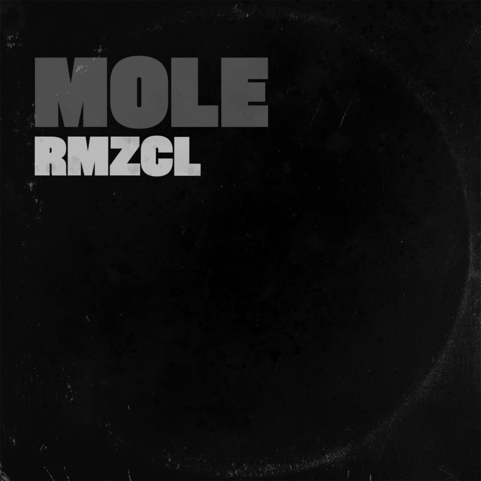 Portada Mole RMZCL